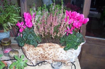 Fleurs de riez votre artisan fleuriste saint hilaire - Jardiniere automne hiver ...